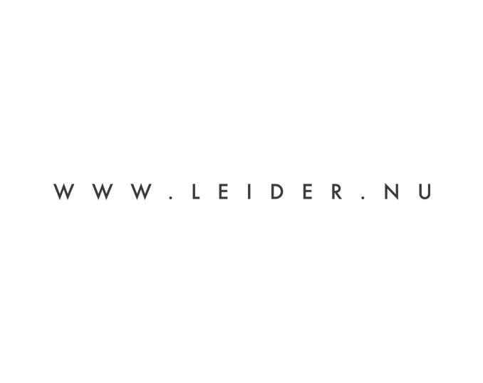 Website tag Dutch Leadership Academy